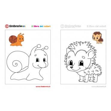 disegno da colorare lumaca TimbreriaKids 7
